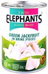 Jackfruit (dżakfrut) w słonej zalewie 24 x 540g (cały karton) - Twin Elephants & Earth Brand